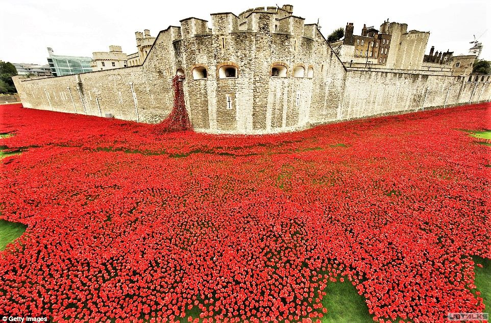 tower-of-london-poppy-tribute.jpg