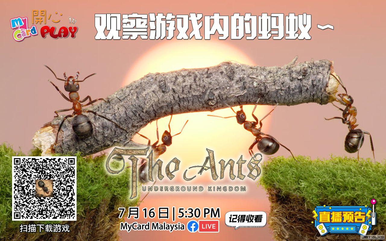 The-Ant--直播預告.jpg